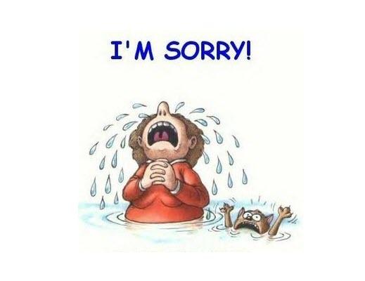 Hình ảnh khóc xin lỗi đáng thương