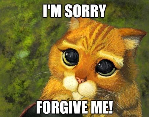 Hình ảnh thay lời xin lỗi