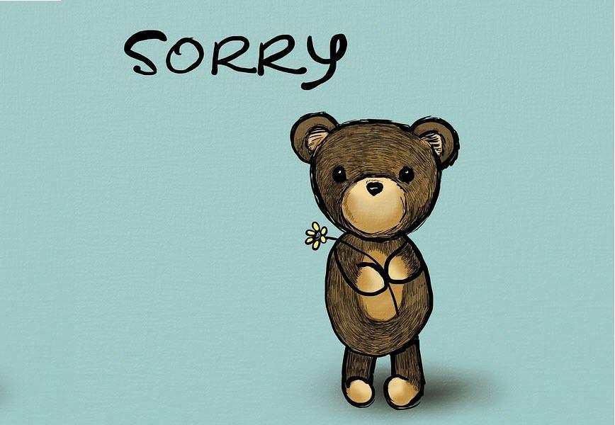 Hình ảnh xin lỗi cực đẹp