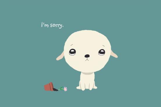 Hình ảnh xin lỗi cute