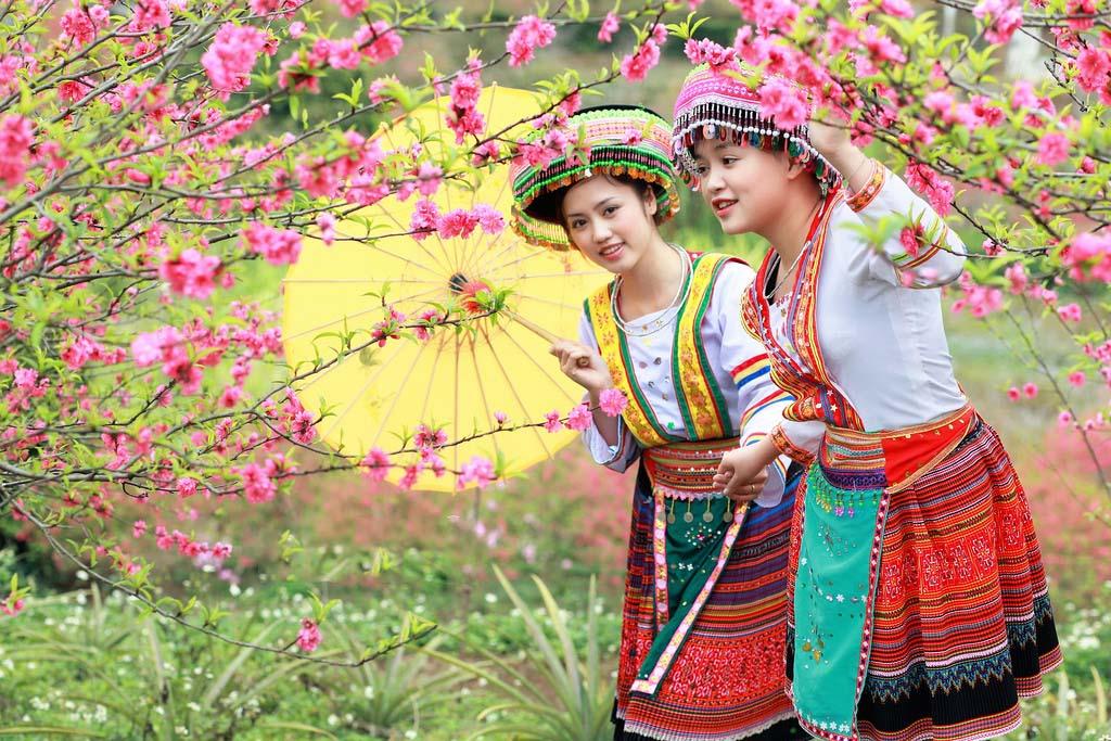 Cận cảnh hoa đào Tết ở Việt Nam