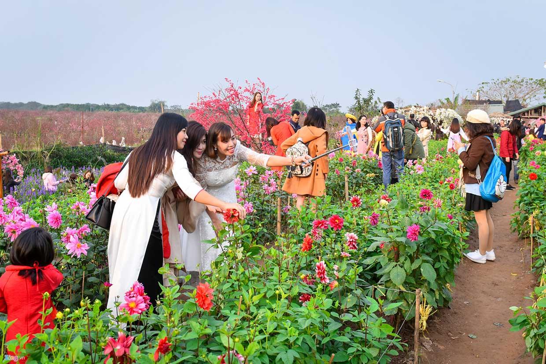 Giới trẻ nô nức chụp hoa đào ngày giáp tết