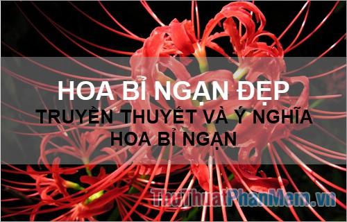 Hoa Bỉ Ngạn đẹp - Truyền thuyết và ý nghĩa hoa Bỉ Ngạn