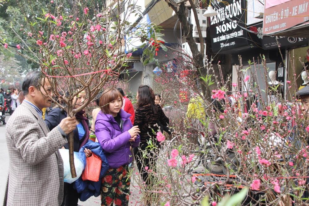 Người dân Việt Nam rộn ràng mua hoa đào Tết ngày đầu năm