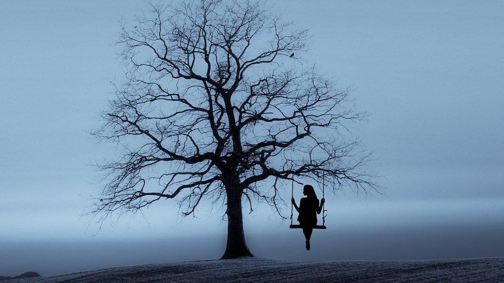 Hình ảnh cây cô đơn