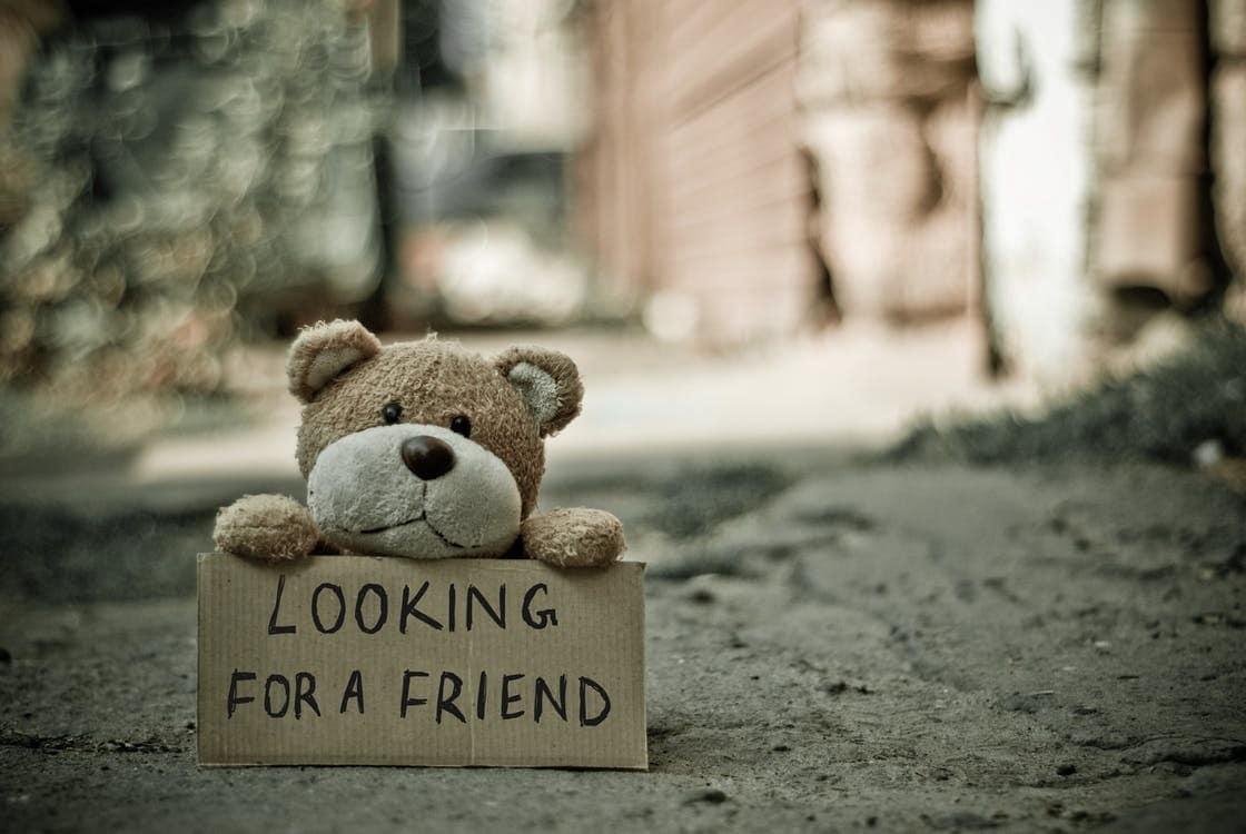Hình ảnh chú gấu cô đơn