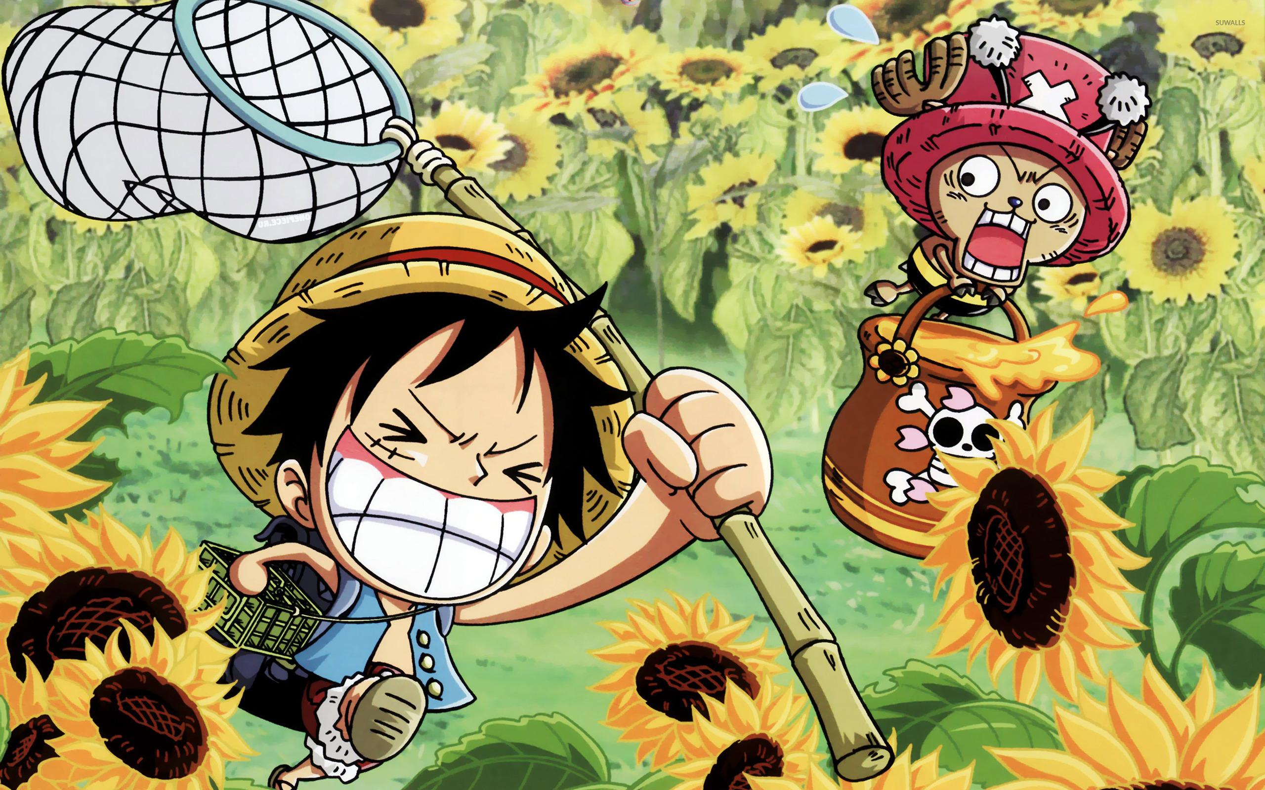Hình nền máy tính Luffy