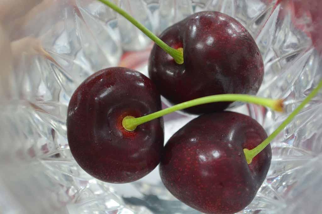 Giá quả Cherry Úc nhập khẩu hiện nay