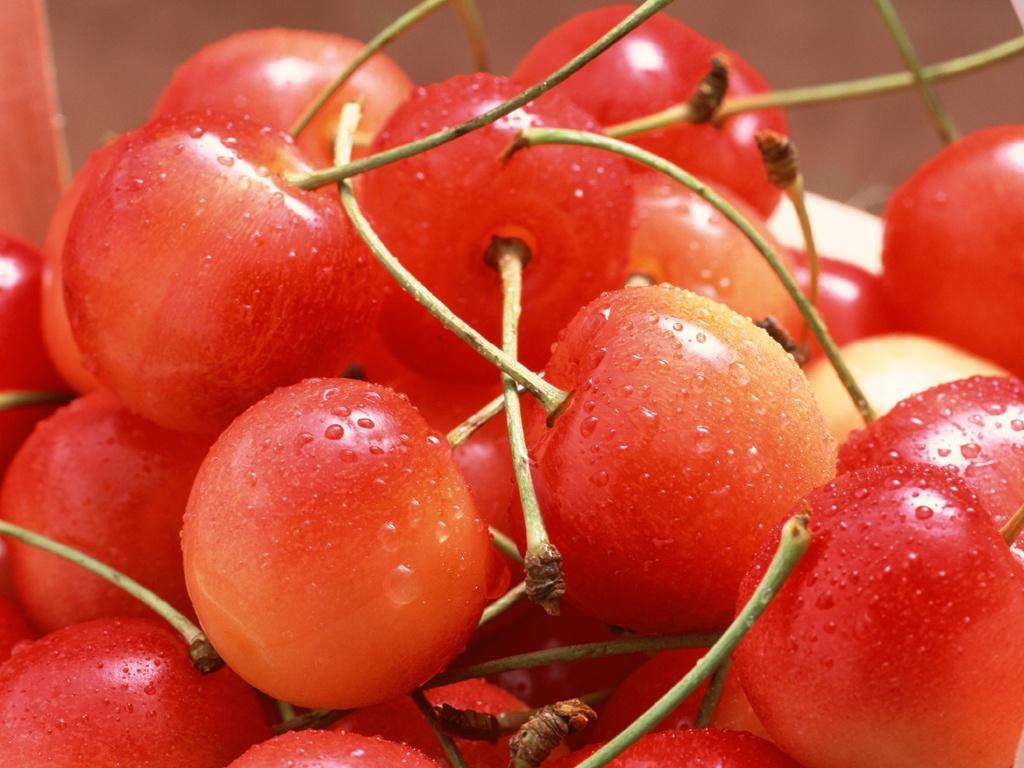 Hình ảnh cherry Bình phước ngon và đẹp nhất