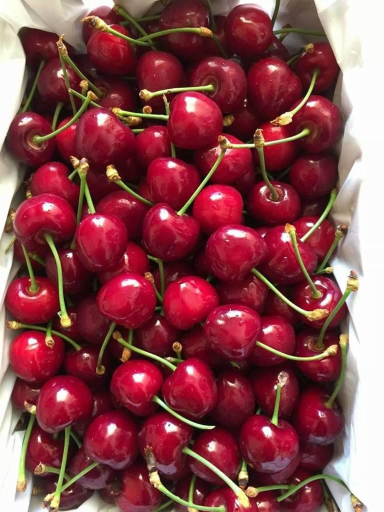 Hình ảnh cherry Mỹ nhập khẩu