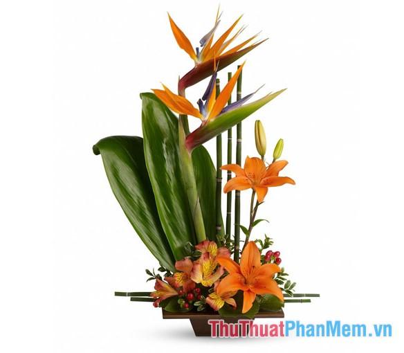 Các mẫu cắm hoa - 5