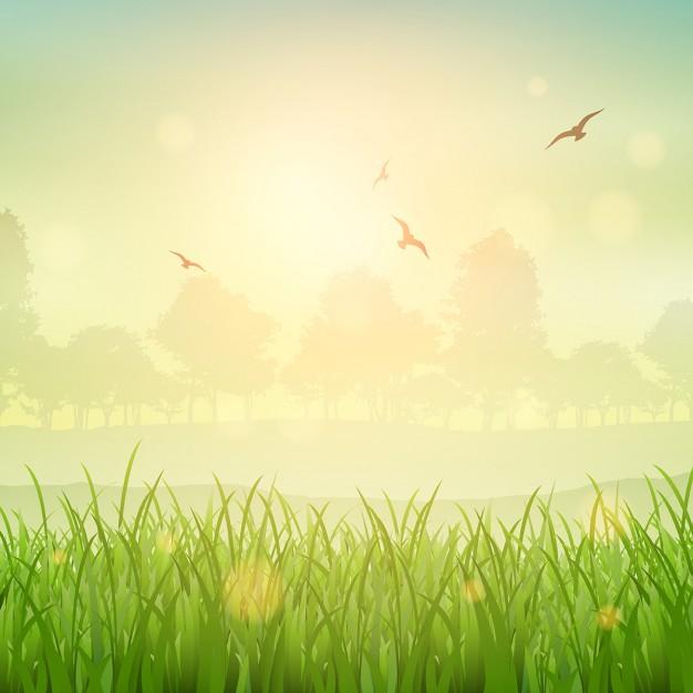 Background thiên nhiên đẹp