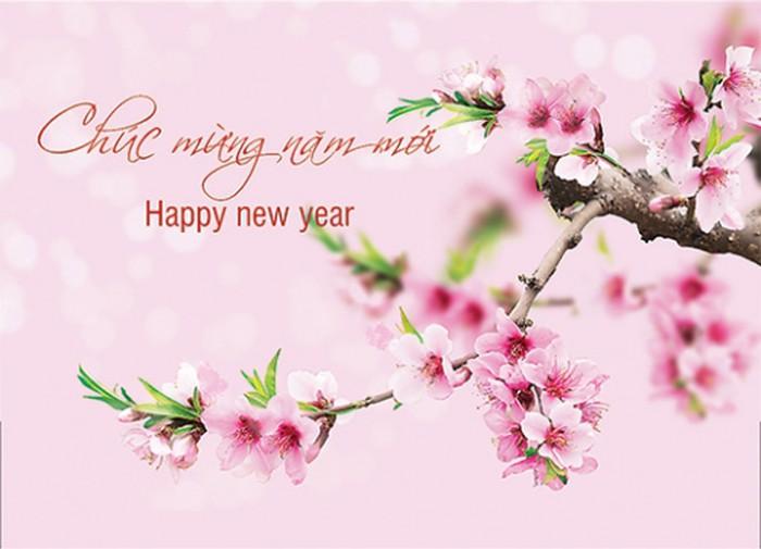 паразитический новогодние открытки вьетнама горизонтальных линий