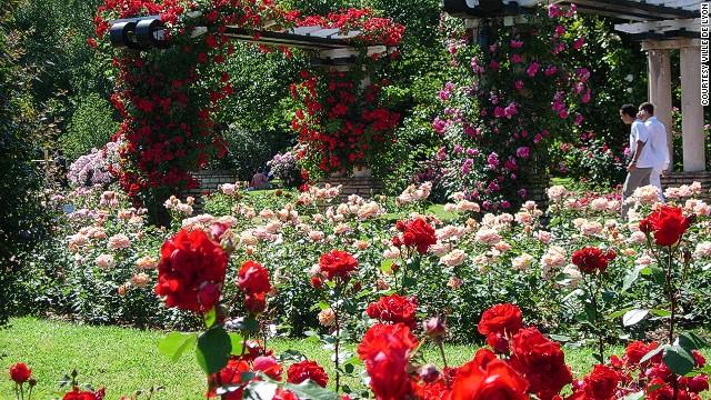 Ảnh vườn hoa đẹp nhất