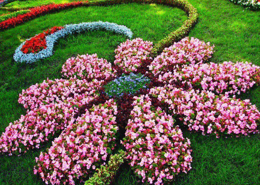 Bố cục vườn hoa đẹp