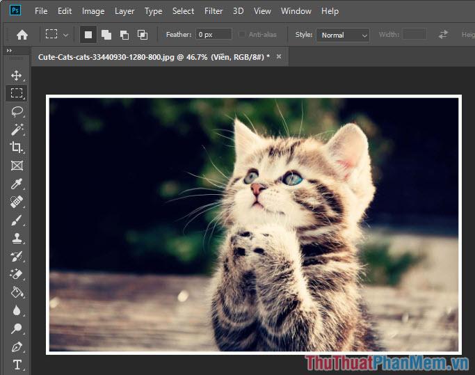Cách tạo viền cho ảnh trong Photoshop