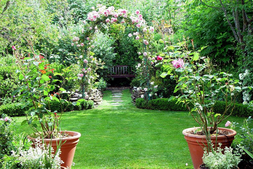 Các hình ảnh vườn hoa đẹp nhất