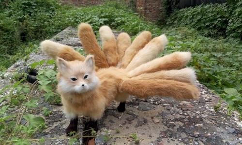 Hình ảnh con cáo 9 đuôi