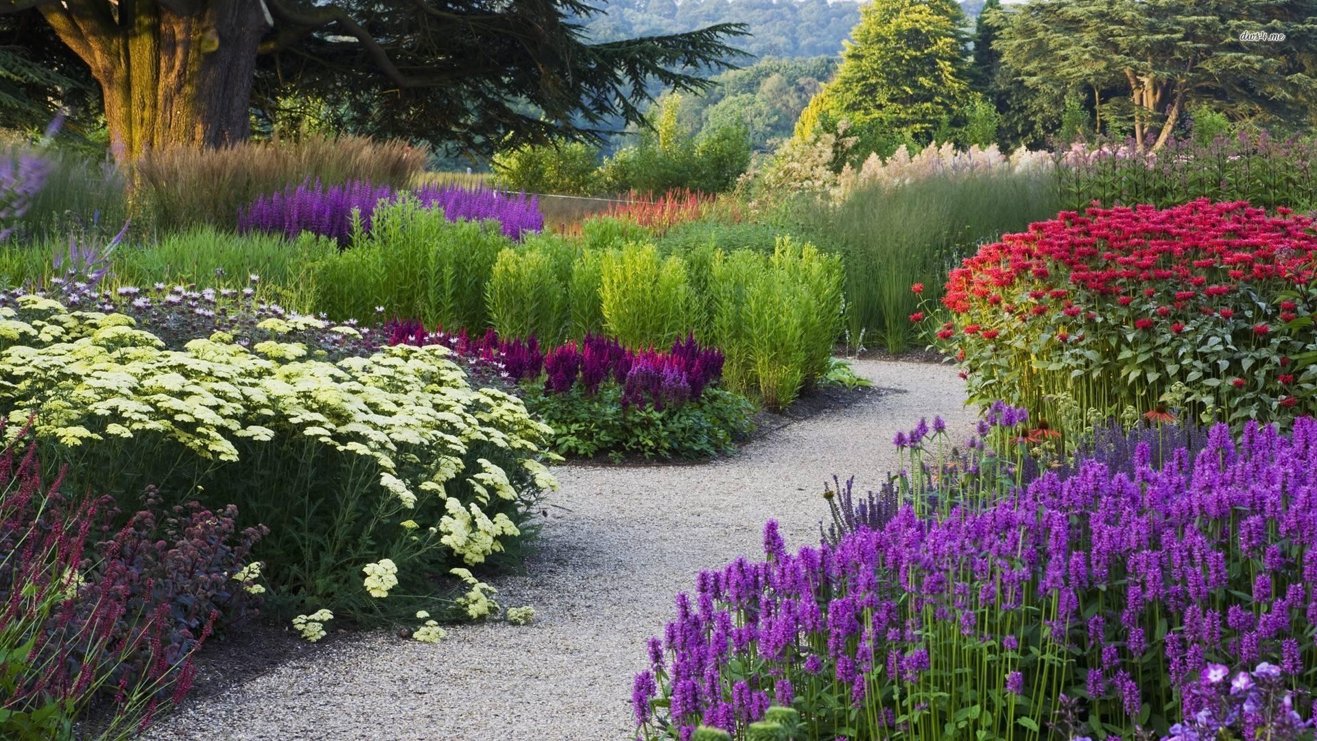 Hình ảnh khu vườn hoa đẹp