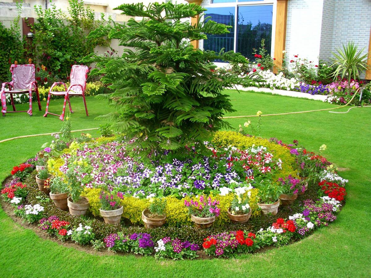 Hình ảnh những vườn hoa đẹp