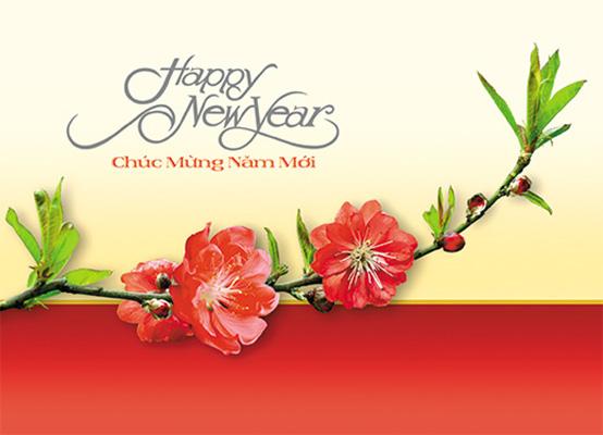 Hình ảnh thiệp mừng năm mới đẹp và hay