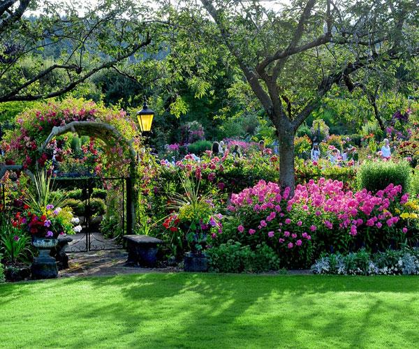 Hình ảnh vườn hoa cực đẹp