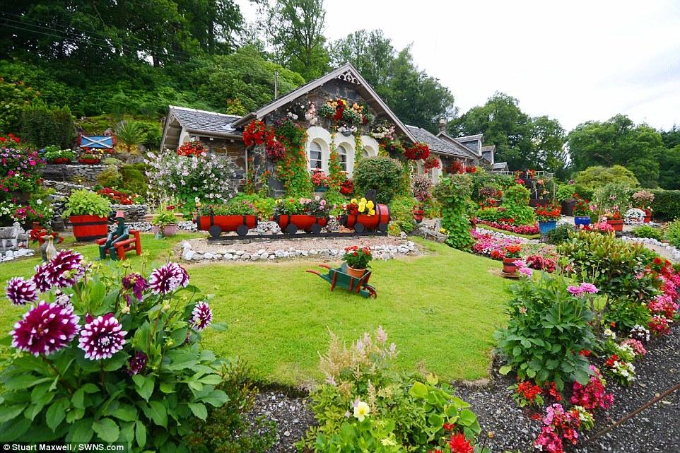 Hình ảnh vườn hoa đẹp