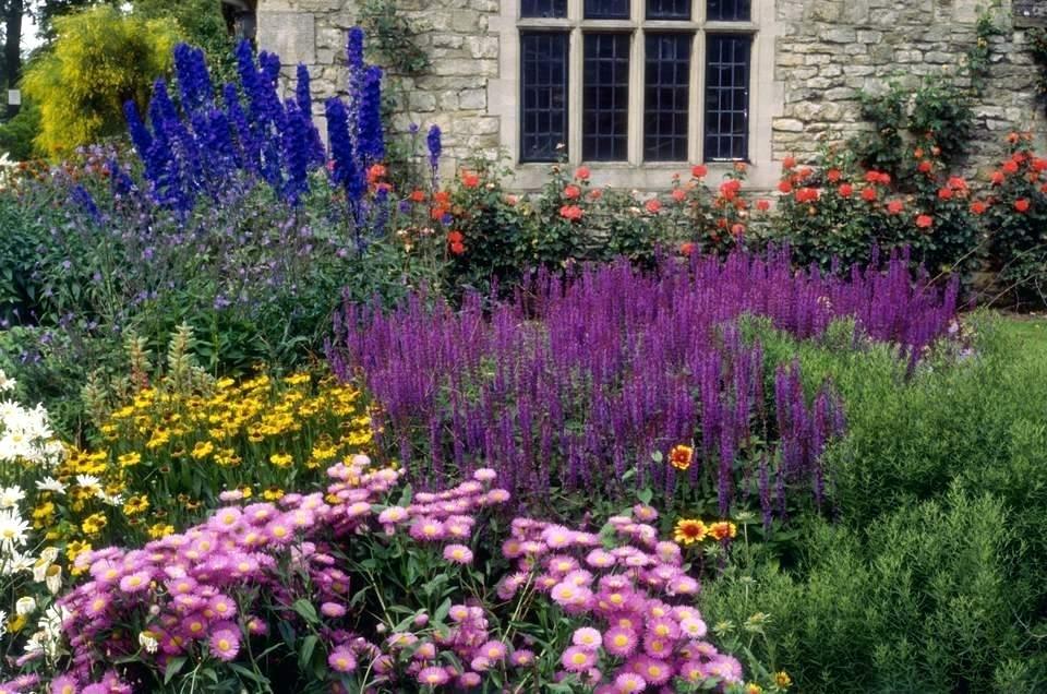 Hình ảnh vườn hoa nhỏ đẹp