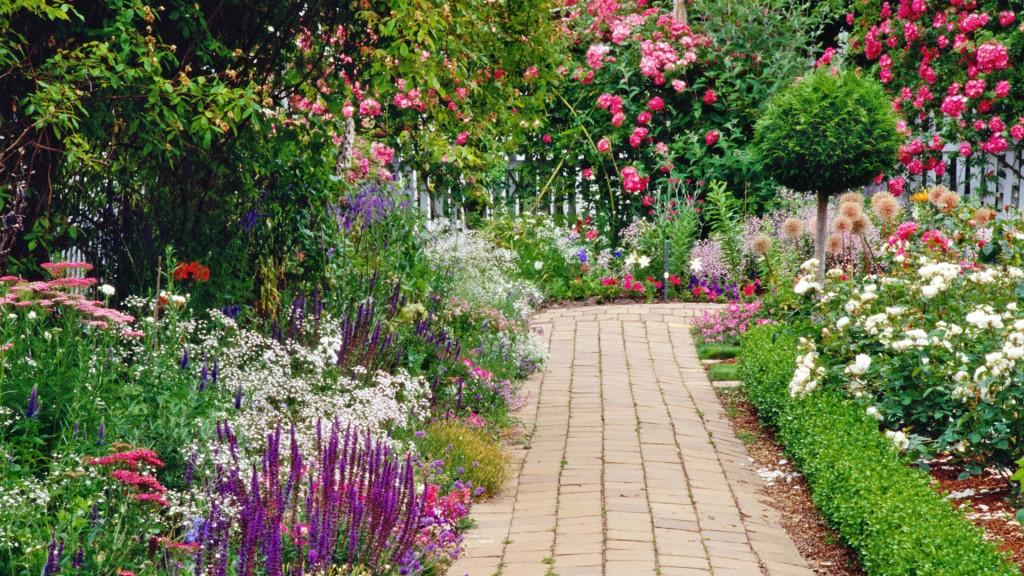Hình ảnh vườn hoa