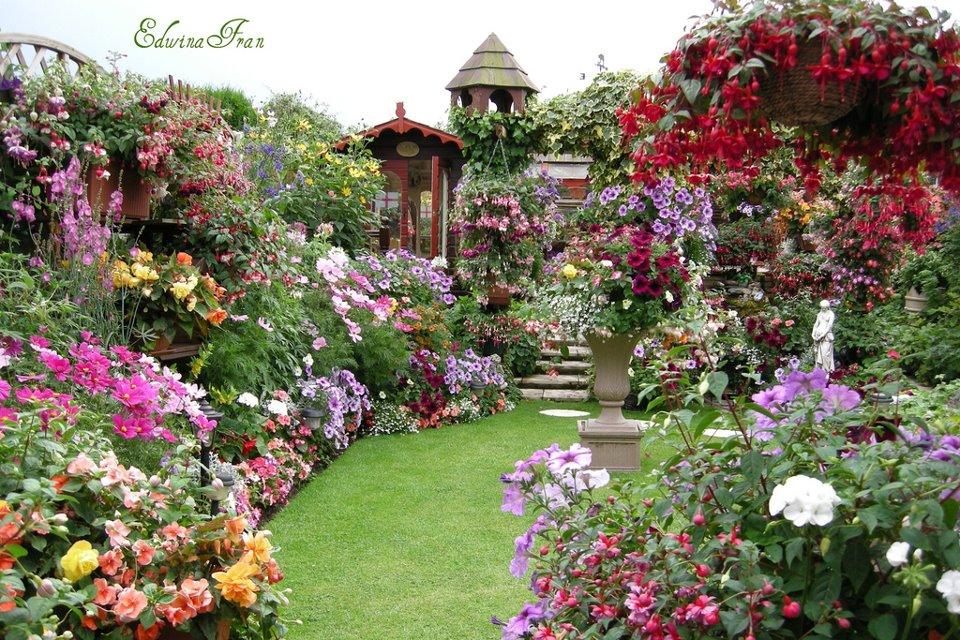 Hình vườn hoa đẹp