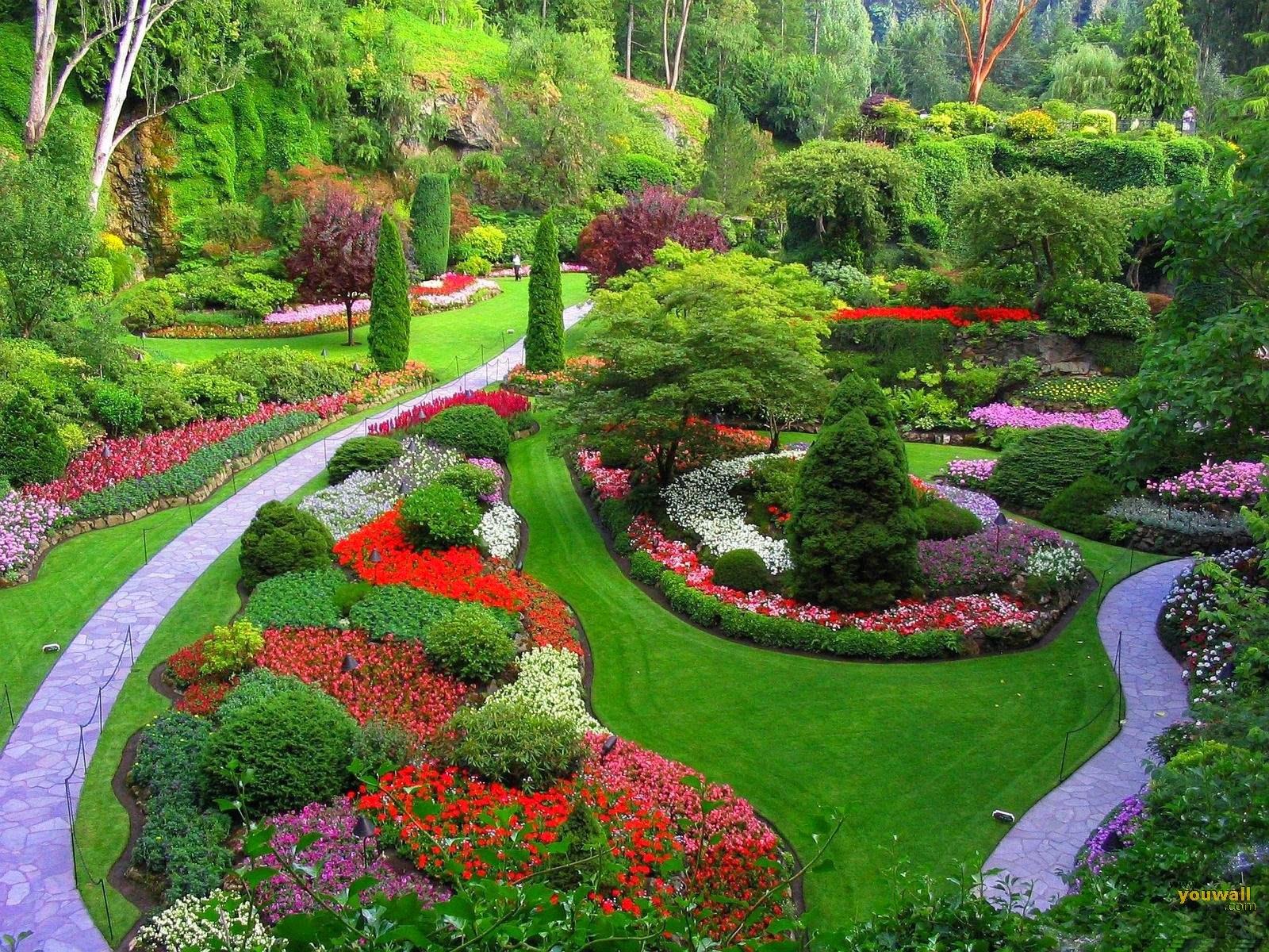 Mẫu vườn hoa đẹp