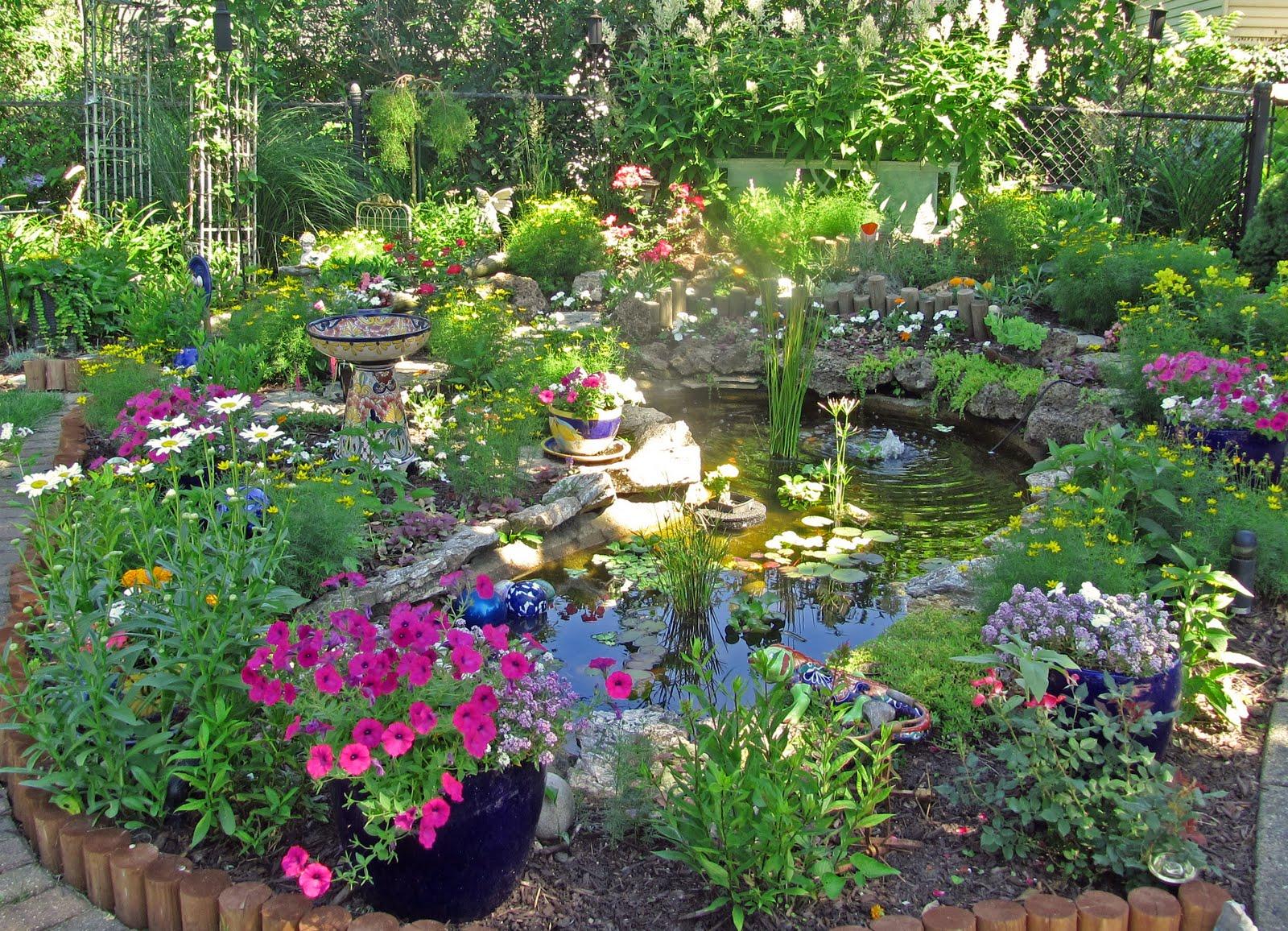 Những chậu hoa nhỏ trong vườn đẹp