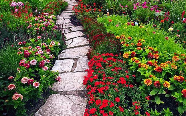 Những hình ảnh vườn hoa đẹp