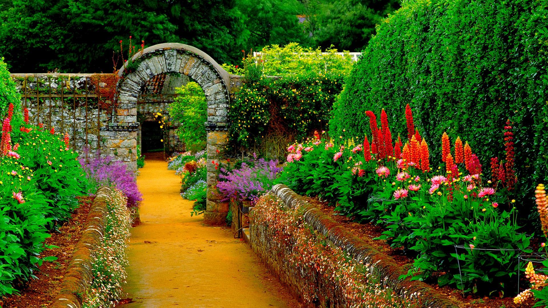 Sân vườn ngập hoa đẹp