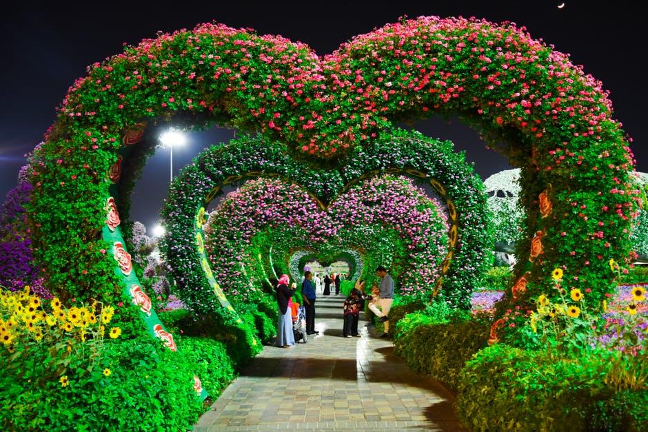 Vườn hoa đẹp hình trái tim