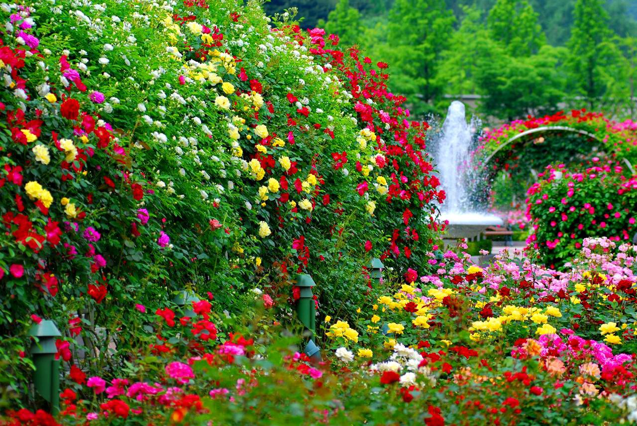 Vườn hoa đẹp nhất thế giới