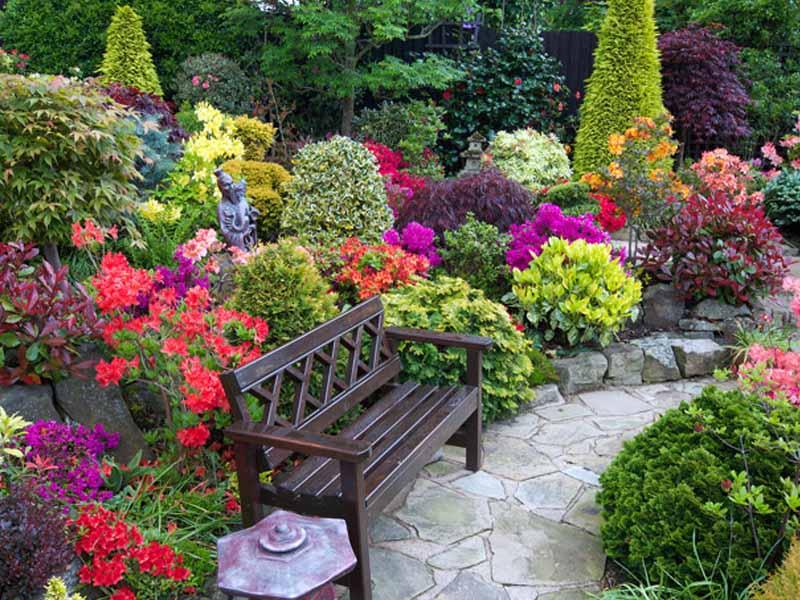 Vườn hoa đẹp nhất