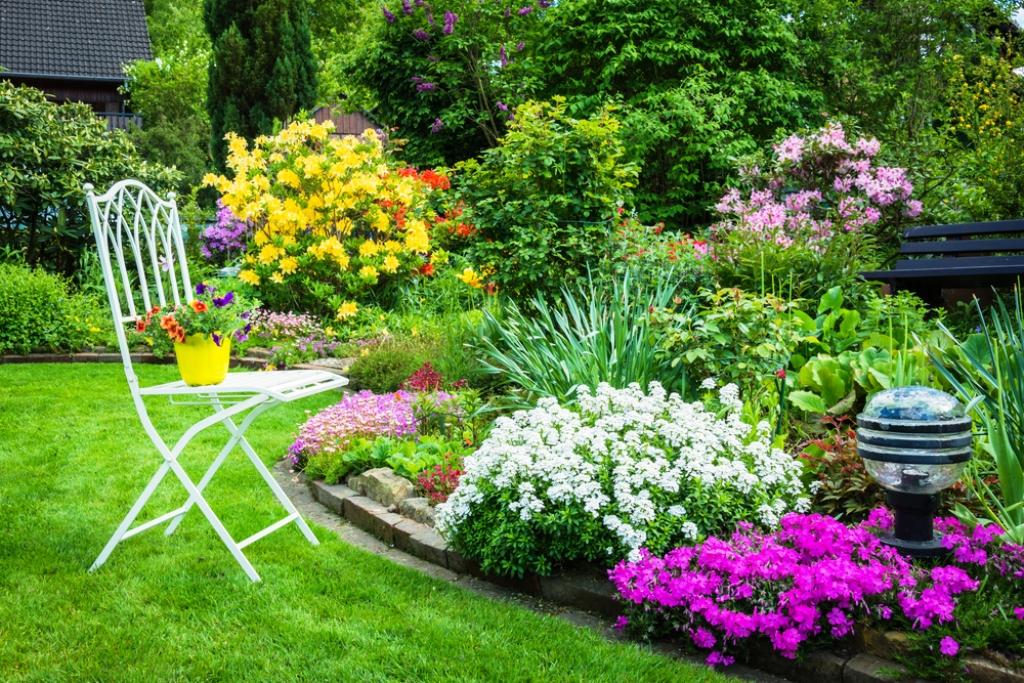 Vườn hoa đẹp nhiều màu sắc