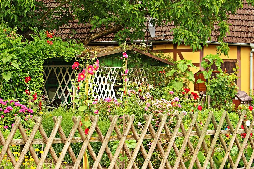 Vườn hoa đẹp trước nhà