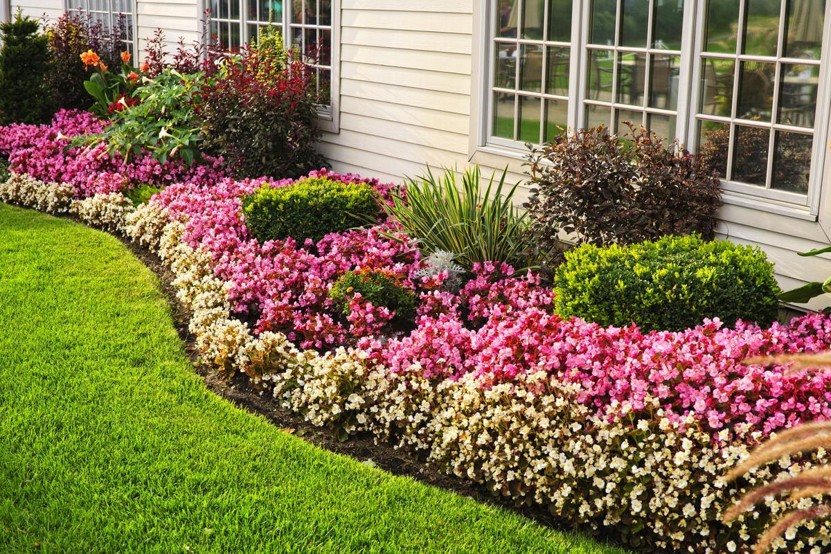 Vườn hoa đẹp ven nhà đẹp