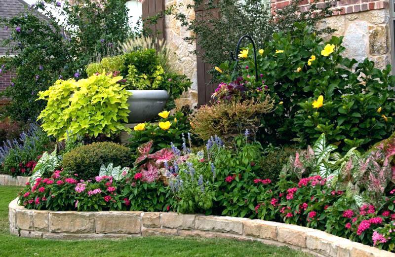 Vườn hoa nhiều màu sắc đẹp