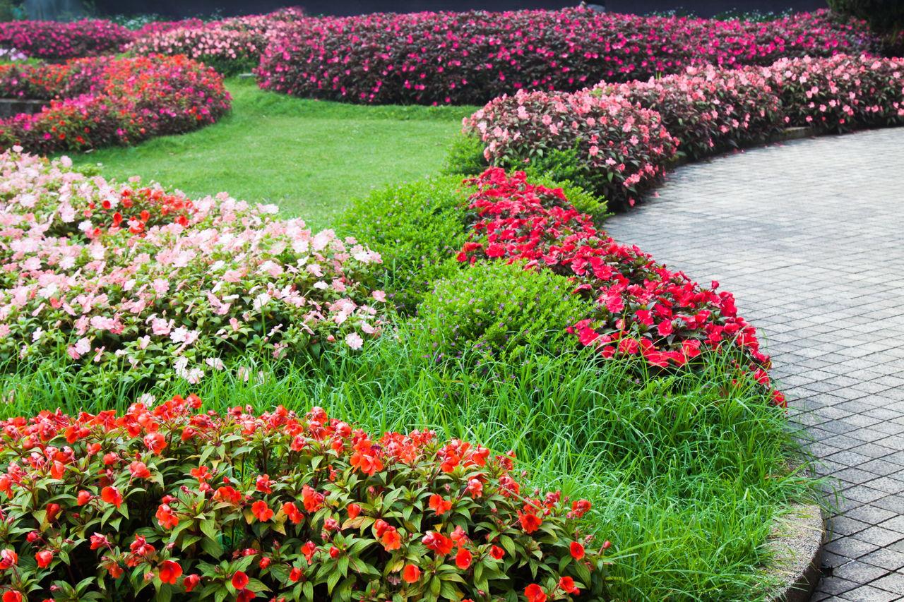 Vườn hoa rộng đẹp
