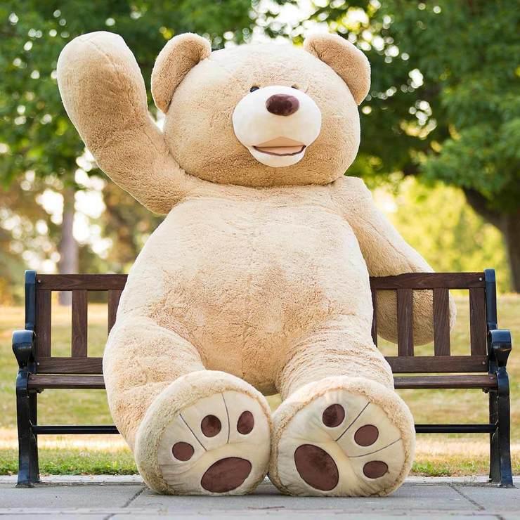 Gấu bông đẹp và rẻ tại Hà nội