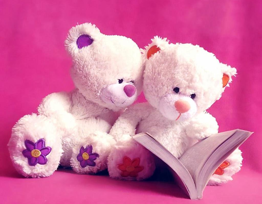 Gấu bông teddy cực kì dễ thương