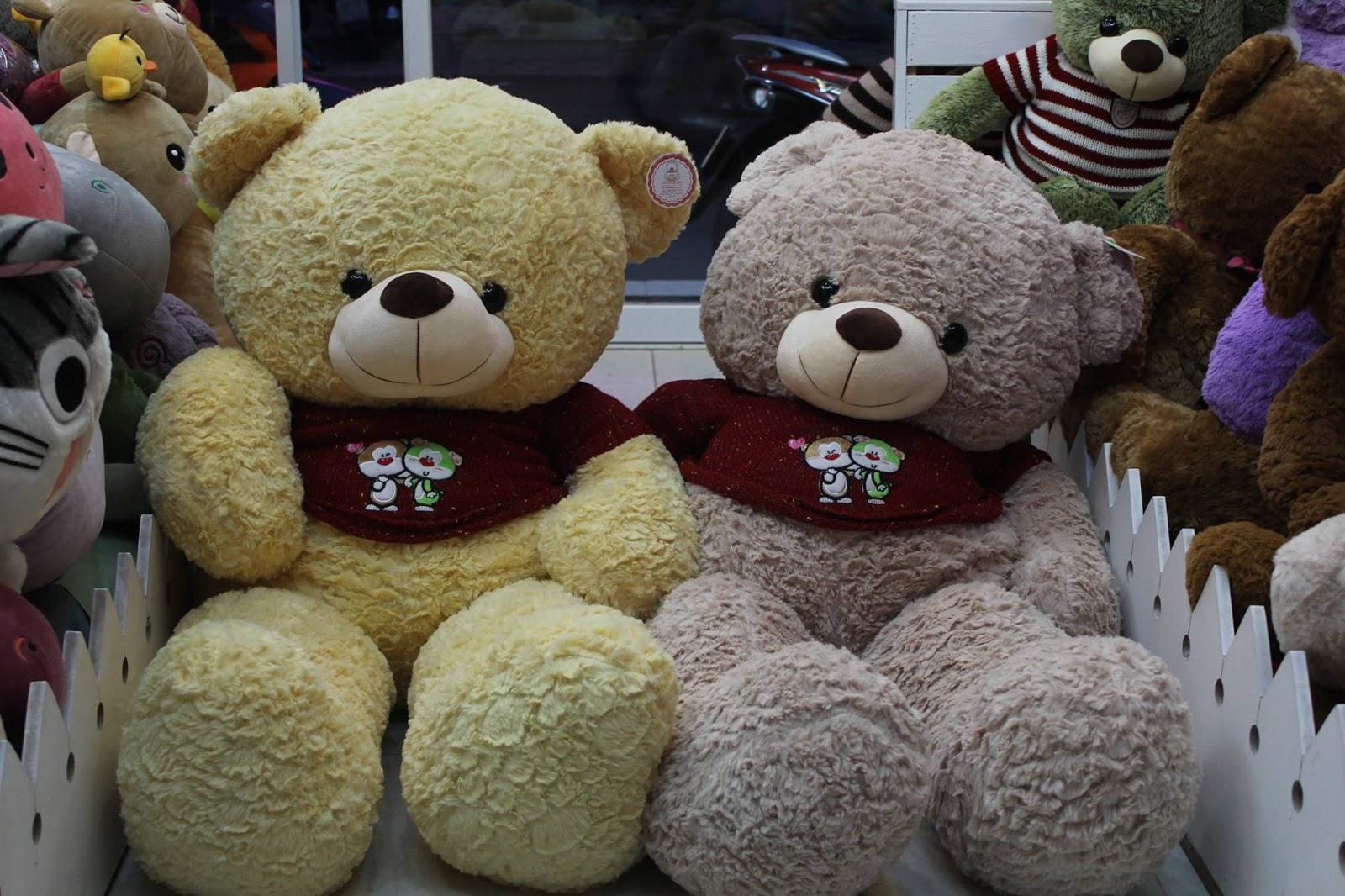 Gấy Teddy áo len sọc đẹp