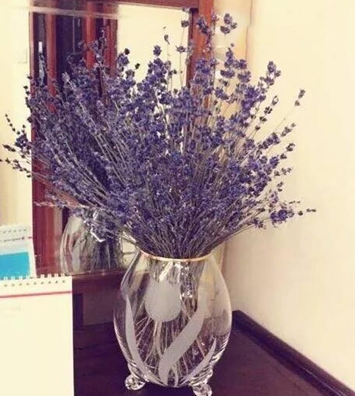 Hoa Lavender khô hoa may mắn bình an