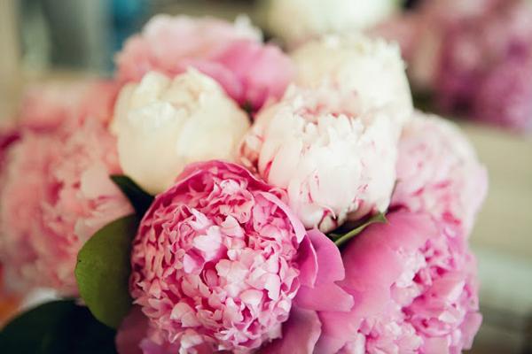 Lẵng hoa cẩm chướng tặng người yêu