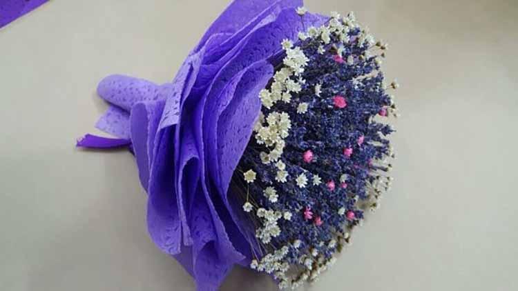 Mua hoa Lavender ở Shop nào