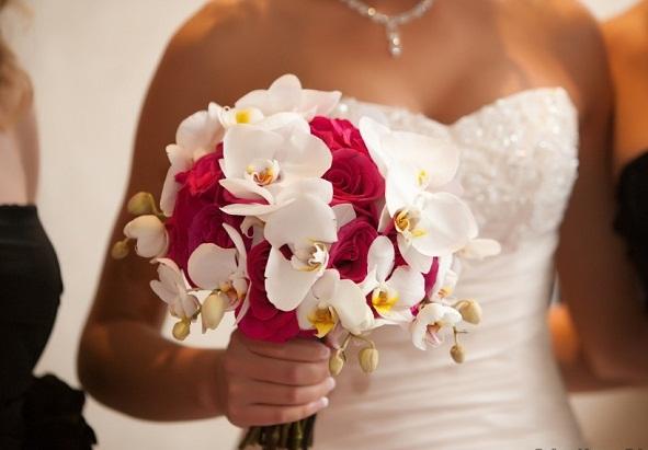 Rạng ngời với hoa cầm tay lan hồ điệp đẹp nhất