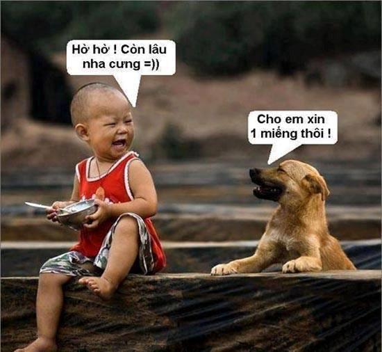 Những hình ảnh hài hước (2)